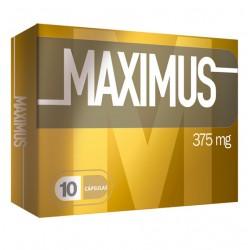 MAXIMUS 10 UN